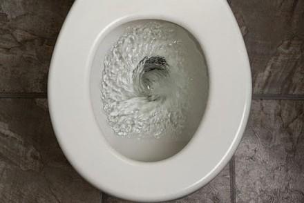 toilet_flushing