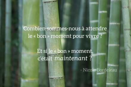 citation du livre L'art de se réinventer