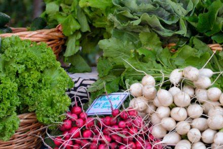 légumes de saison ungestealafois.co